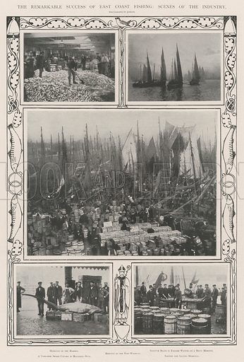 The Remarkable Success of East Coast Fishing, Scenes of the Industry. Illustration for The Illustrated London News, 9 November 1901.