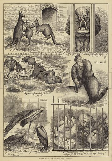 Easter Monday at the Zoological Gardens. Illustration for The Illustrated Sporting and Dramatic News, 22 April 1876.