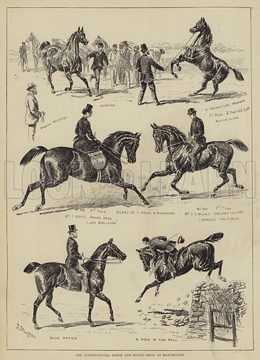The International Horse and Hound Show at Manchester. Illustration for The Illustrated Sporting and Dramatic News, 12 August 1876.