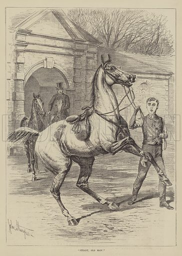 Steady, Old Man! Illustration for The Illustrated Sporting and Dramatic News, 30 October 1880.