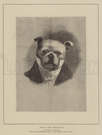 Dogs of the Corporation. Illustration for The Illustrated Sporting and Dramatic News, 20 November 1880.