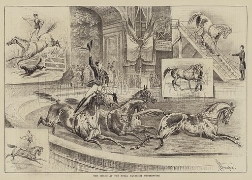The Circus at the Royal Aquarium, Westminster. Illustration for The Illustrated Sporting and Dramatic News, 4 December 1880.