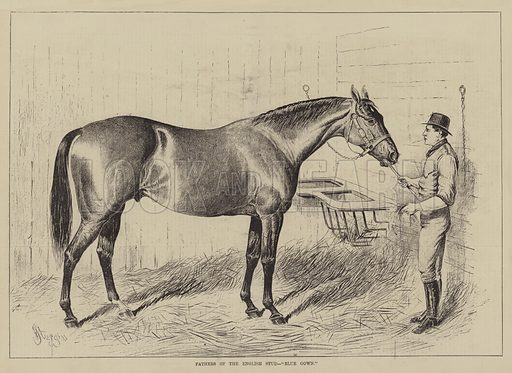 """Fathers of the English Stud, """"Blue Gown"""". Illustration for The Illustrated Sporting and Dramatic News, 25 December 1880."""