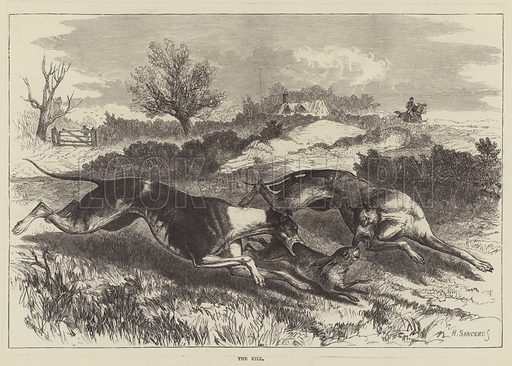 The Kill. Illustration for The Illustrated Sporting and Dramatic News, 19 February 1881.