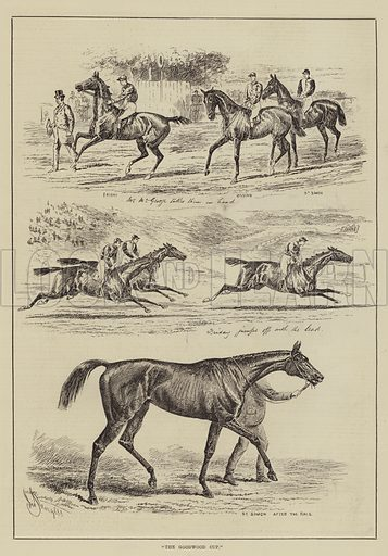 The Goodwood Cup. Illustration for The Illustrated Sporting and Dramatic News, 9 August 1884.