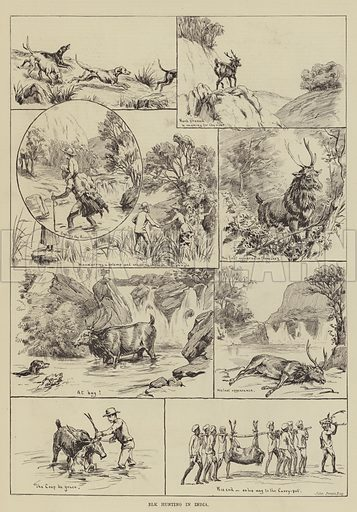 Elk Hunting in India. Illustration for The Illustrated Sporting and Dramatic News, 23 August 1884.