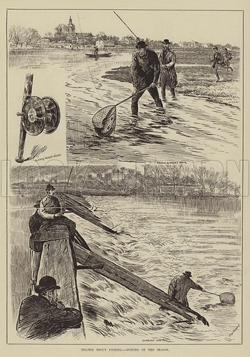 Thames Trout Fishing, Opening of the Season. Illustration for The Illustrated Sporting and Dramatic News, 5 April 1884.