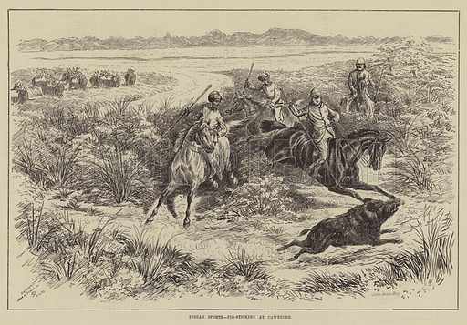 Indian Sports, Pig-Sticking at Cawnpore. Illustration for The Illustrated Sporting and Dramatic News, 31 May 1884.