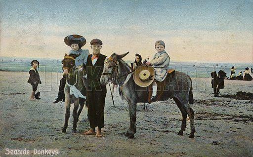 Seaside Donkeys