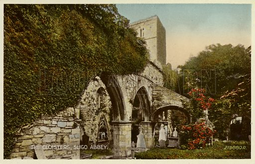 The Cloisters, Sligo Abbey.