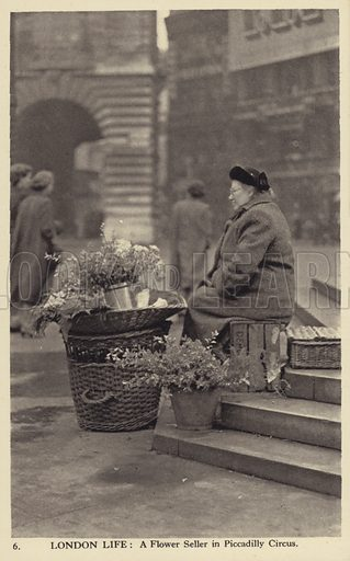 A flower seller in Piccadilly Circus, London