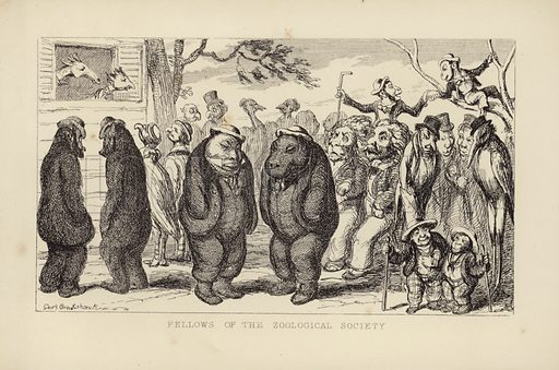 Fellows of the Zoological Society. Anthropomorphic zoo animals parading as members of the zoological society. Published in the 'Comic Almanac' of 1851.