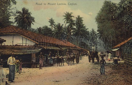 Road to Mount Lavania in Ceylon.