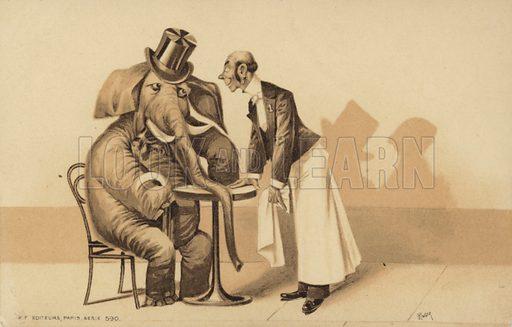 Waiter serves an elephant