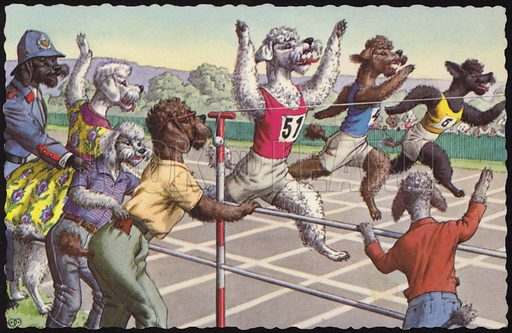 Dogs in a running race. Postcard, circa early twentieth century.