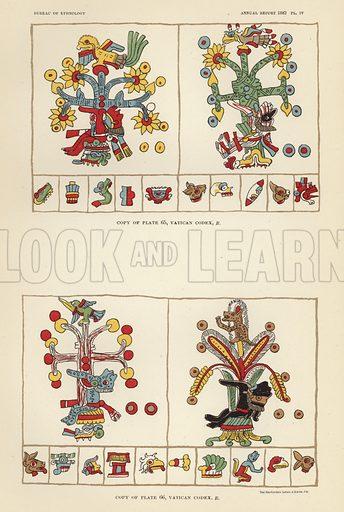 Vatican Codex