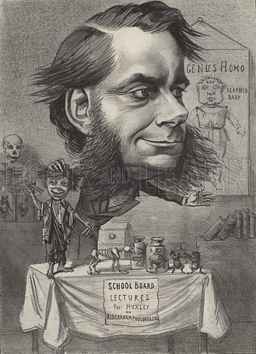 Thomas Henry Huxley (1825-1895), English biologist. Known as Darwin's Bulldog for his strong support of Charles Darwin's theory of evolution.
