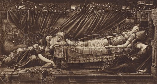 The Sleeping Beauty. Educational poster.