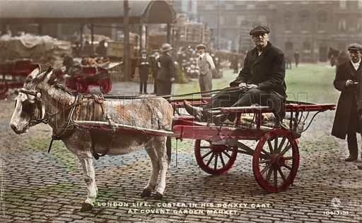 London costermonger in his donkey cart at Covent Garden Market