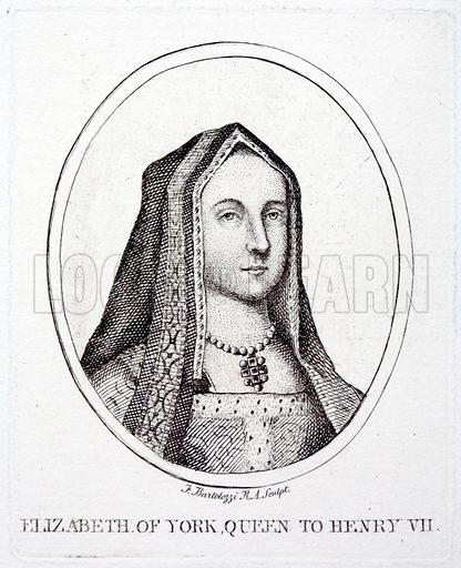 Elizabeth of York (1466-1503), Queen Consort of King Henry VII.
