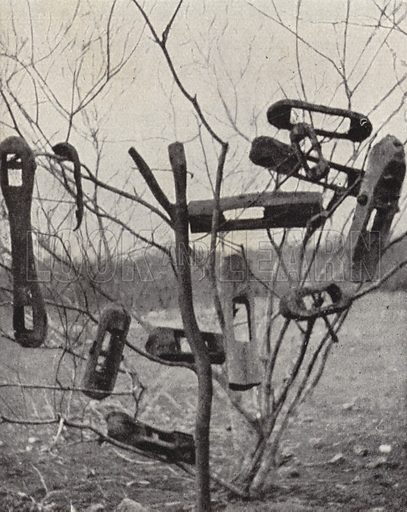 Slave collars at an abandoned camp of a slave traders' caravan in the Congo.