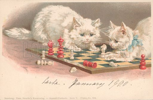 Cats playing chess.  German, c 1900.  Published by Theo Stroefer's Kunstverlag, Nurnberg.