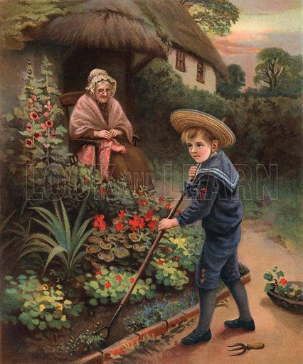 gardening boy, picture, image, illustration