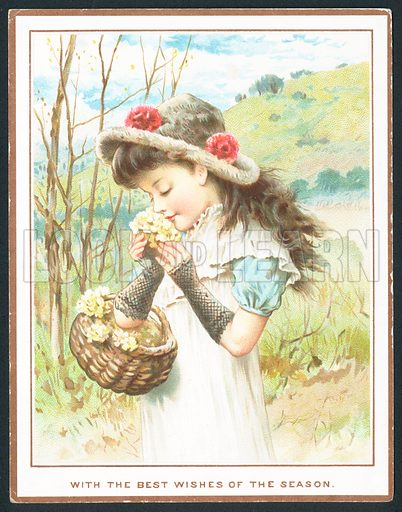 Girl smelling flowers from basket, Christmas Card.