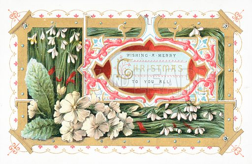 Snowdrops and Flowers, Christmas Card