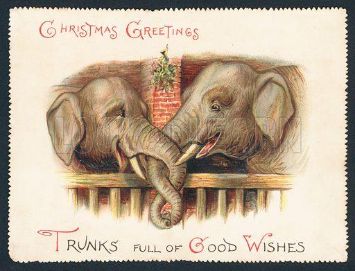 Two Elephants – trunks entwined, Christmas Card
