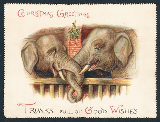 two elephants  trunks entwined christmas card stock