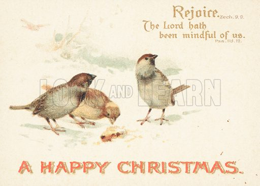 Sparrows in the Snow, Christmas Card.