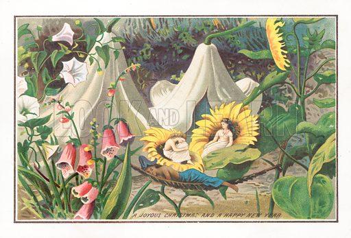 Fairies Sleeping, Christmas Card