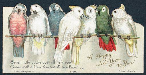 Cockatoos, New Year Card