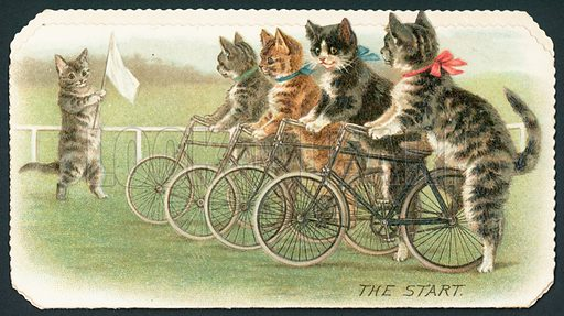 The Start, Cat Cycle Race, Christmas Card