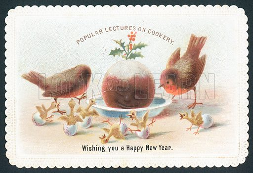 Robins and Chicks looking at smiling plum pudding, New Year Card