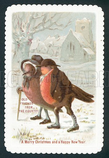 Robins wearing clothes, Christmas Card.