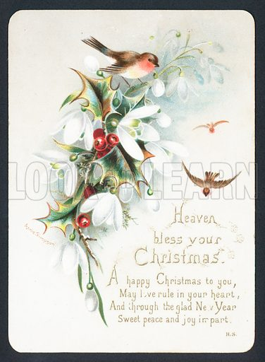 Robins with holly and snowdrops, Christmas Card