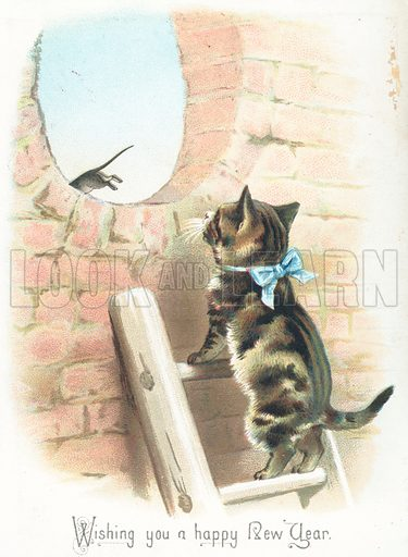 tabby cat watching mouse run away new year card