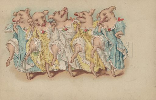 A group of pigs dancing in a line
