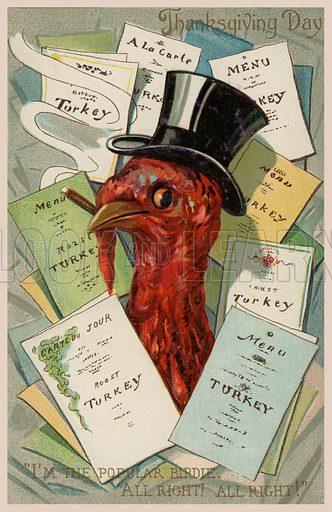 Turkey, Thanksgiving