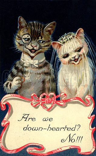 Comic cats, Wedding. Postcard, very early 20th century.