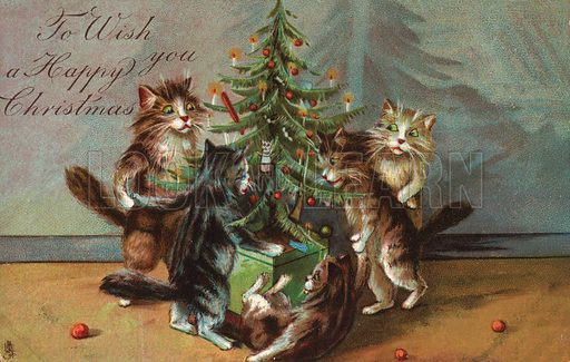 Comic cats, destroying Christmas Tree.  Postcard, very early 20th century.