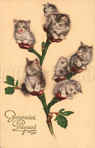 Comic cats, as catkins. Postcard, very early 20th century.
