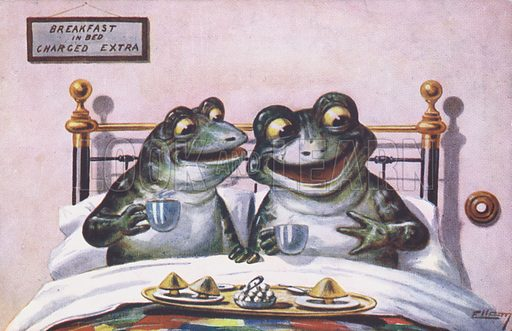Two frogs share breakfast in bed