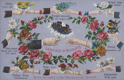 The language of flower bouquets