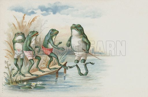 Frogs going swimming