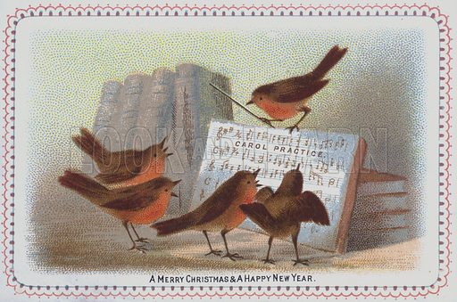 Group of robins singing carols, Christmas card.