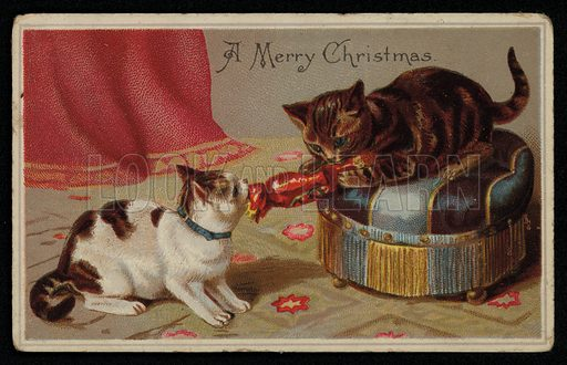 Two cats pulling a Christmas cracker, greetings card, late 19th century.