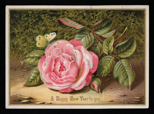 Butterfly with a pink rose, New Year's greetings card, late 19th century.